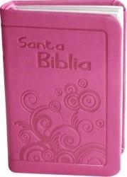 Biblia RVR60 de Bolsillo con Canto Plateado