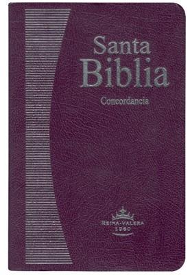 Biblia RVR1960 065c Lila (Imitación Piel Lila) [Biblia]