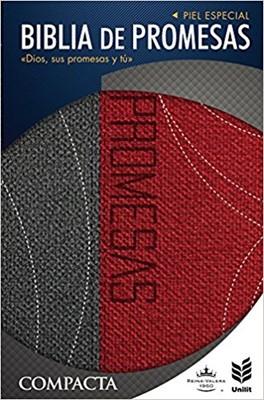Biblia RV60 Promesas Compacta  Piel Gris (Tapa piel especial dos tonos gris/rojo) [Biblia]