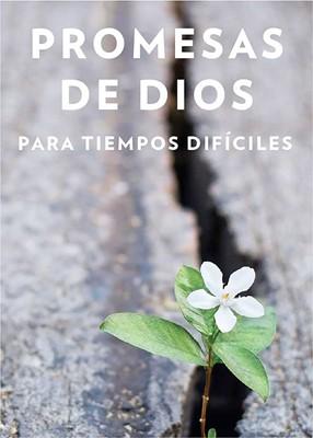 Promesas de Dios Para Tiempos Difíciles (Rústica)