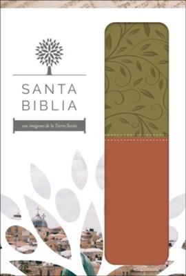 Santa Biblia RVR 1960 Letra grande, imitación piel verde/marrón, imágenes de Tierra Santa