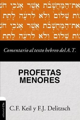 Comentario al Texto Hebreo del Antiguo Testamento (Rústica) [Comentario]