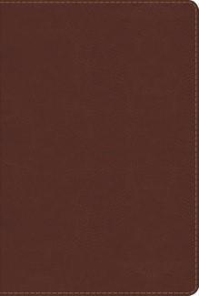 Biblia Reina Valera de Estudio Arco Iris (Imitación Piel Chocolate) [Biblia de Estudio]