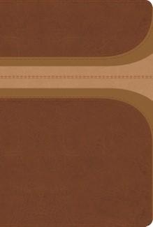 Biblia Reina Valera de Estudio Arco Iris con Índice (Imitación Piel Canela/Damasco) [Biblia de Estudio]