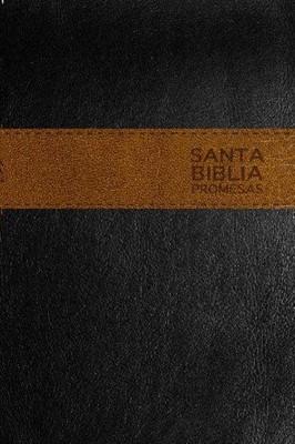 Biblia NTV de Promesas
