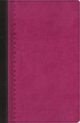 Biblia De Estudio Reina Valera Tras Las Huellas Del Mesías (Imitación Piel Rosa) [Biblia de Estudio]