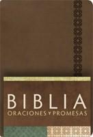 Biblia Reina Valera Contemporánea Oraciones Y Promesas