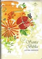 Biblia Reina Valera Letra Grande