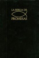 Biblia De Promesas Reina Valera